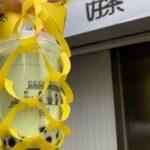 黄色いリボンがかわいい!月島のタピオカ専門店「好茶(こうちゃ)」でタピ活してきました