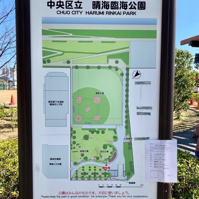 晴海 臨海 公園