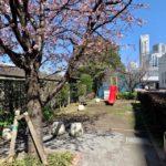 勝どき地区の公園全紹介【勝どき5丁目緑地付属のミニ公園(?)】